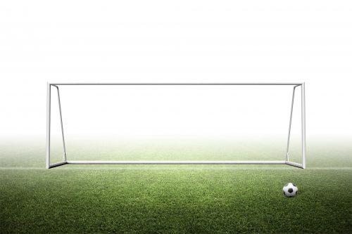 8'H x 24'W Portable senior soccer goal